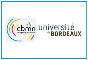 Bourses d'études au Master International (M2) à la Faculté de Pharmacie de l'Université de Bordeaux 2021-2022