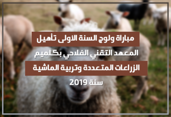 مباراة ولوج السنة الأولى تأهيل بالمعهد التقني الفلاحي بكلميم 2019